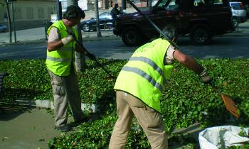 El Ayuntamiento refuerza el servicio de limpieza con la incorporación de 21 trabajadores a Eco-Equip