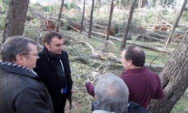 El alcalde de Terrassa solicita a la Generalitat una ayuda de € 1.050.763,45 por las afectaciones de las ventadas